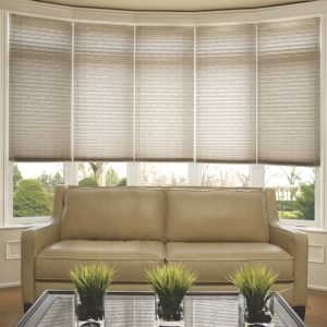 Bow Window with Pleated Shades